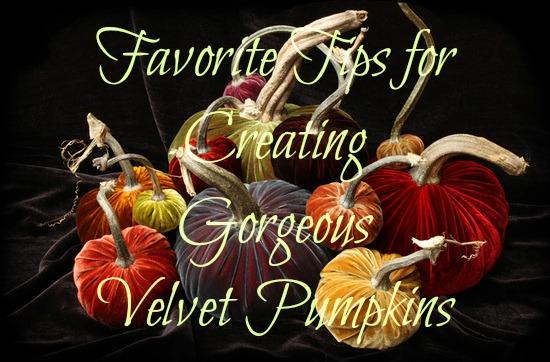 9-Velvet Pumpkins Tips