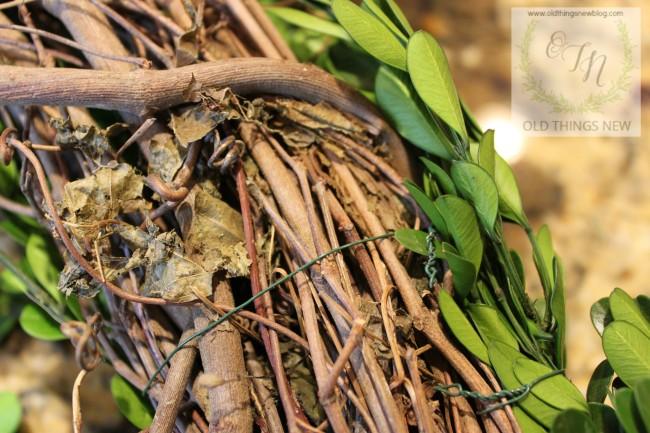 Boxwood Wreath 002