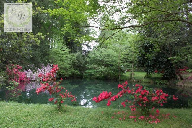 Greenville Gardens Tour 422