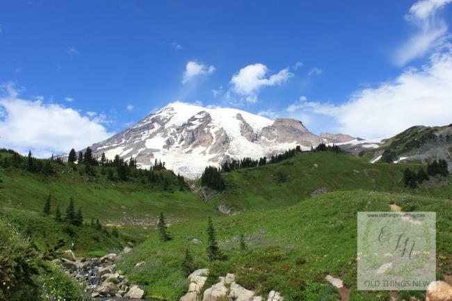 Mt Rainier067