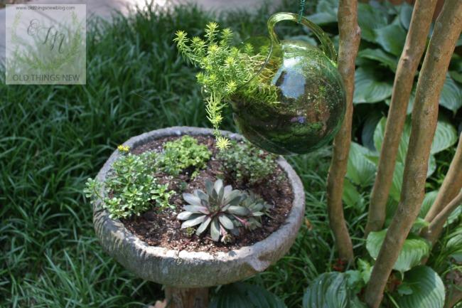Succulent Birdbath 001a