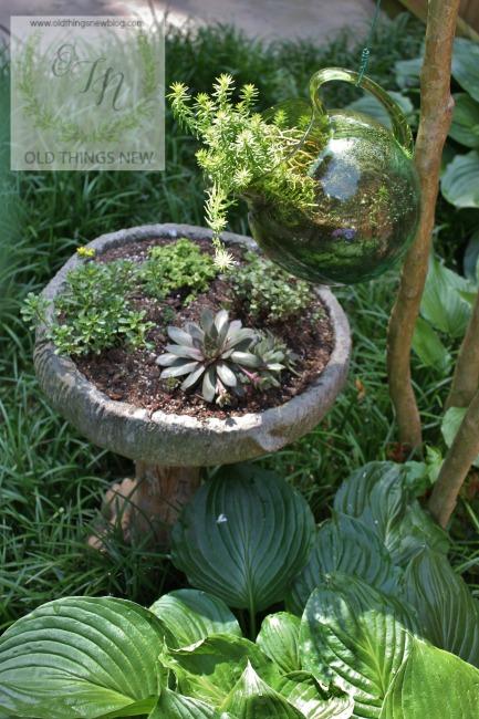 Succulent Birdbath 002