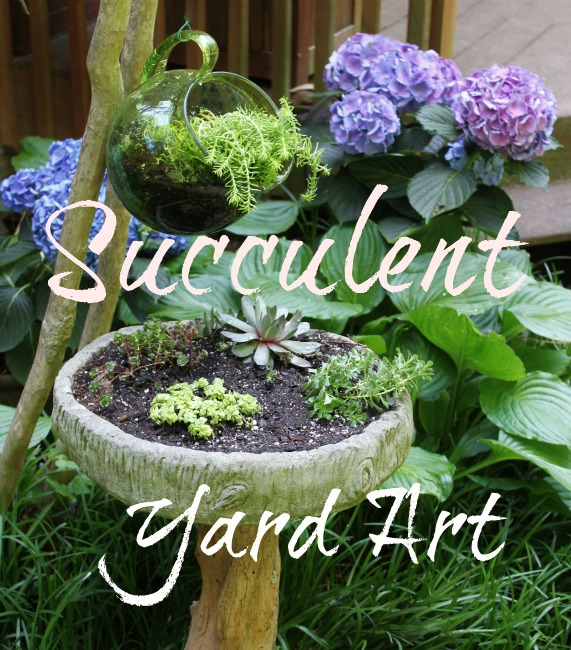 Succulent Yard Art