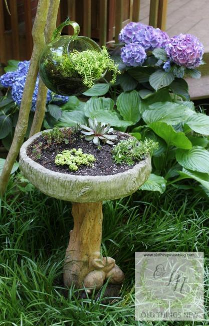Succulent birdbath 011