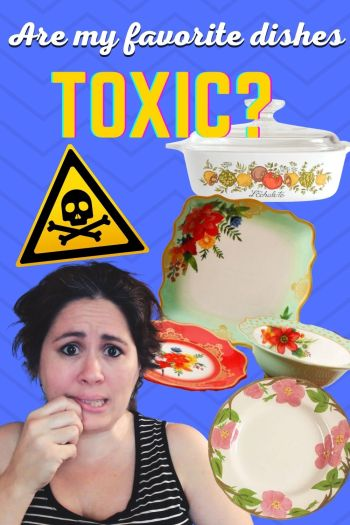 Are my favorite dishes toxic?