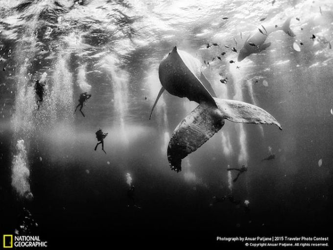 Anuar Patjane. National Geographic.