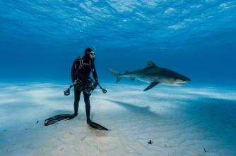 Brian Skerry. Foto: National Geographic