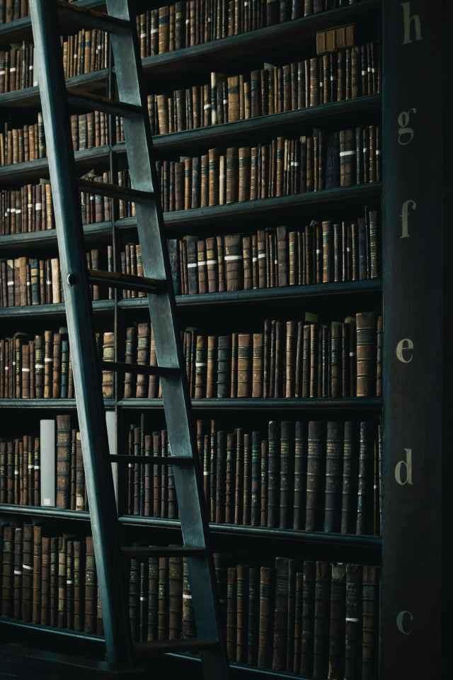 dark green bookshelves