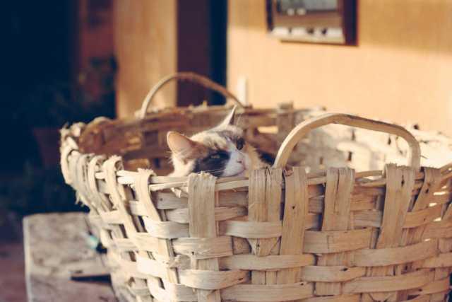 woven laundry basket