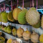 Durian Fruit: I Smell Health Benefits
