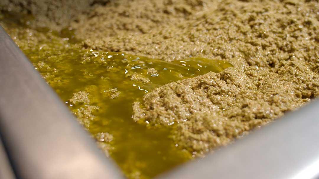 olio-extravergine-gramolatura