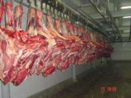 Famato discute quinta o embargo à carne bovina do bioma amazônico