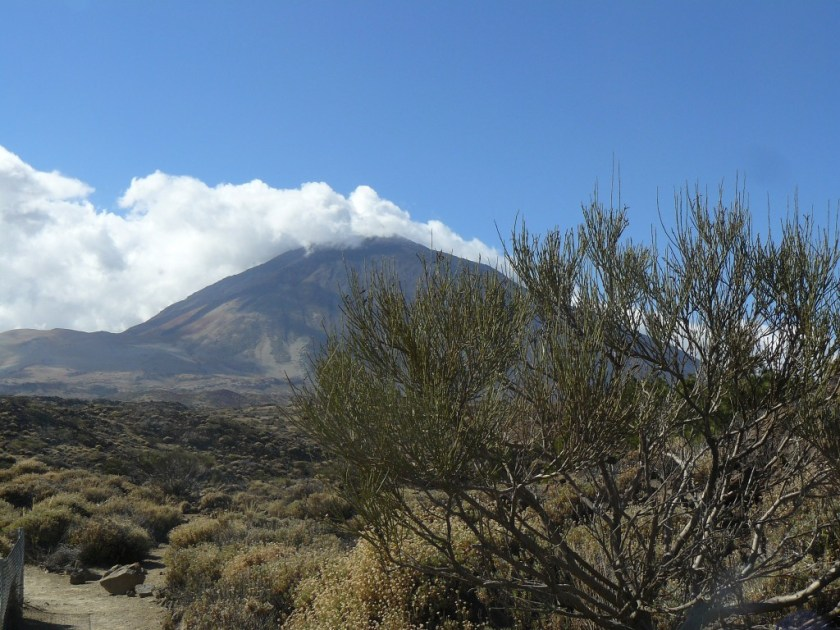 Wanderung_Pico_Teide_Teneriffa