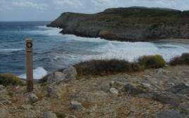 Bucht Cala Torta Mallorca