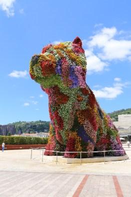 Bunter Hund Bilbao