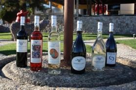 Weinauswahl von Algarve-Weinen