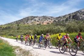 Fahrradtour durch Andalusien mehrere Radfahrer
