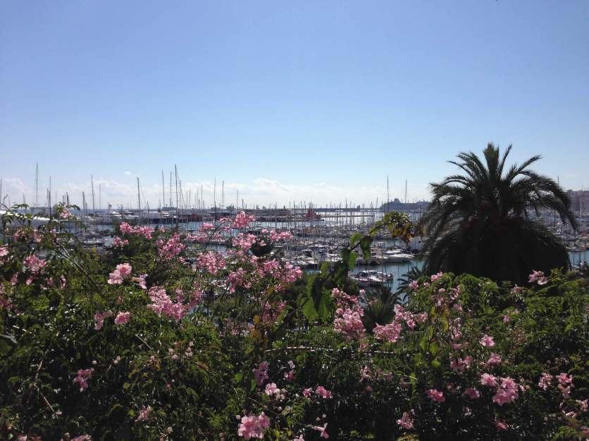 Ausblick Baluard Palma