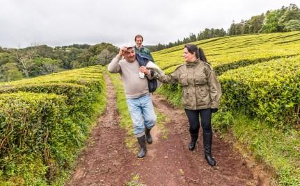 Personen in Teeplantage Cha Gorreana Azoren