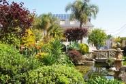 Garten mit Teich Hotel Bosque Mar