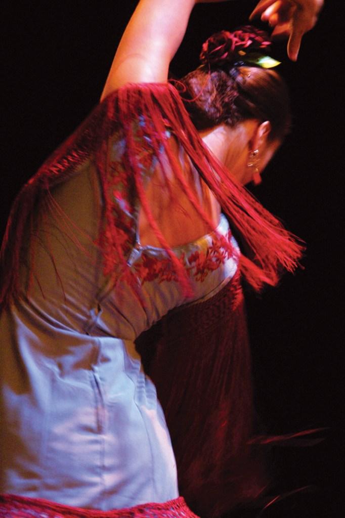 Flamenco-Tänzerin Sevilla