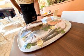 Frischer Fisch in Lissabon