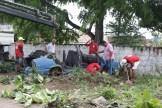 Mutirão de recolhimento de carcaças em Rio Doce. Foto: Jorge Pereira/Pref.Olinda