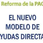 Reforma de la PAC: Nuevas ayudas directas 2015. Olivar de Sierra Los Pedroches. Aceite Ecológico.