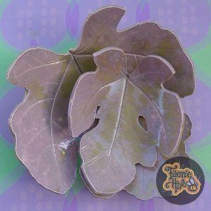 Celery & Lavender Fig Leaf Dish Set