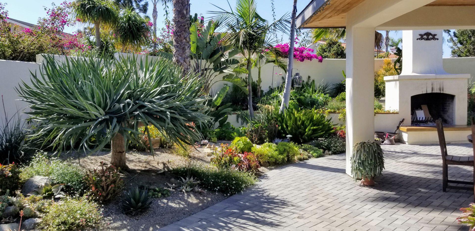 Carlsbad Water Efficient Garden Wins Omwd S Landscape