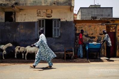 Photo de Saint-Louis, Sénégal