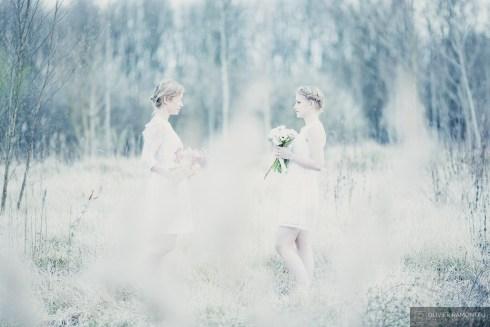 bouquets fleurs photographie