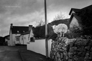 mouton village ecosse