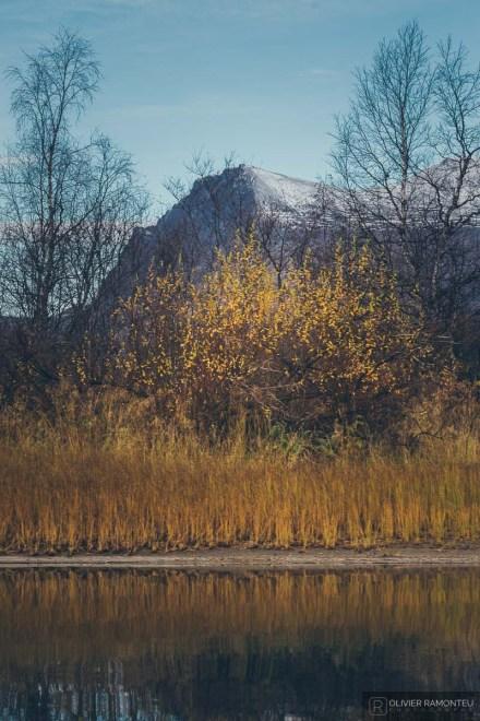 norvege suede voyage photographie roadtrip 2016 10 07965