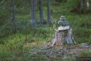 norvege suede voyage photographie roadtrip 2016 10 08065