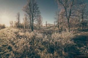norvege suede voyage photographie roadtrip 2016 10 08757