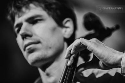 portrait violoncelliste concert