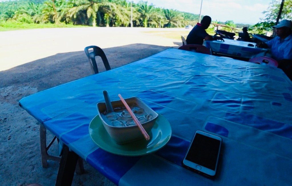 Cendol stop on the way to Mersing