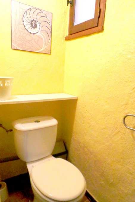 56 SDB wc