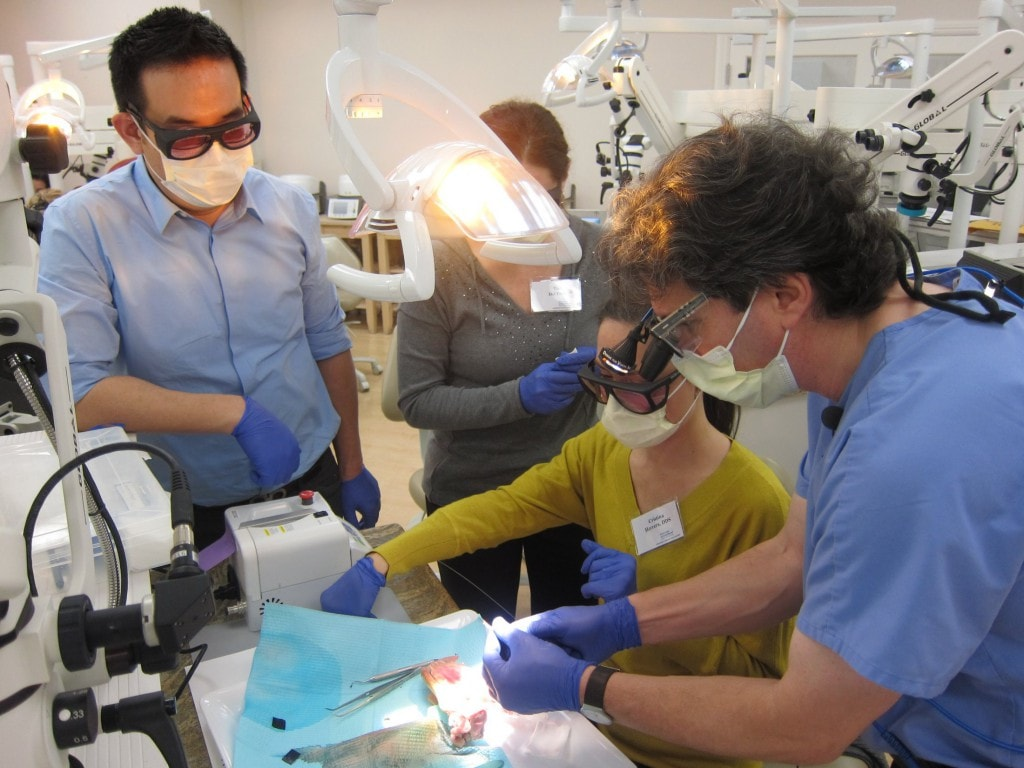 Dr Lomke Hands-on Laser Course 5