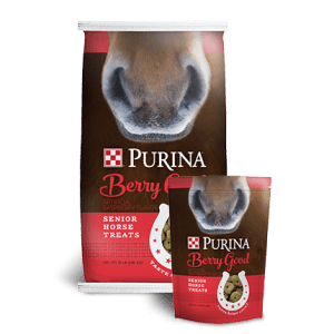 Purina Berry Good Senior Horse Treats