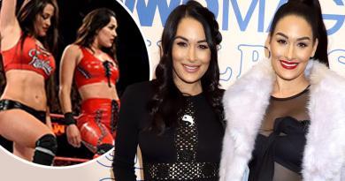 Interesting!! WWE Twins, Nikki & Brie Bella Give Birth A Day Apart (pics)