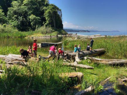 Nature Skills Summer Sessions