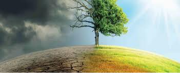 Εγκρίθηκε από το Δ.Σ. Κατερίνης το «Σχέδιο Δράσης για την Αειφόρο Ενέργεια και το Κλίμα του Δήμου