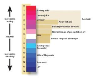 pH level scale