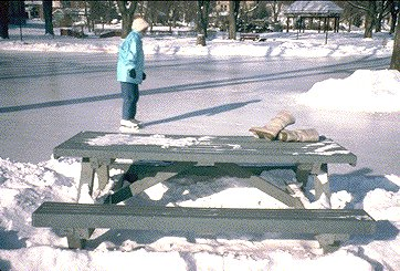Figure 5. Plastic picnic table (made from plastic lumber).