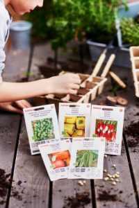 Puutarhatrendit 2019: Joka toinen suomalainen haluaa kasvattaa omat syötävät kasvit