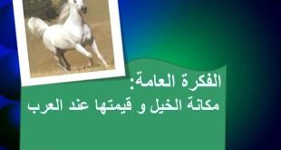 شرح درس الخيل والفروسية عند العرب للصف الثامن عربي فصل اول
