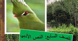 شرح قصيدة مناجاة عصفور لغة عربية الصف السابع الفصل الاول
