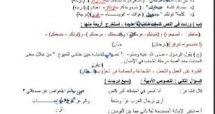 اختبار تشخيصي لغة عربية للصف التاسع الفصل الاول 2021-2022